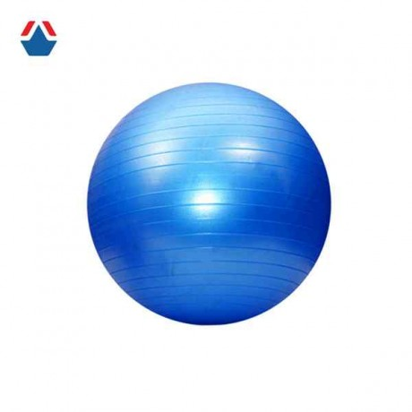 Мяч гимнастический GYM BALL 65 см (07123)